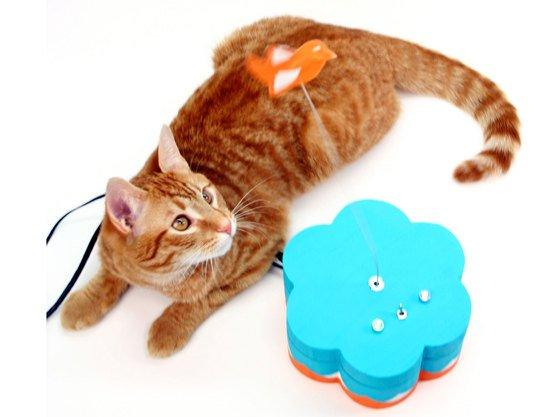 Perfect diy projects for makers who love their pets make