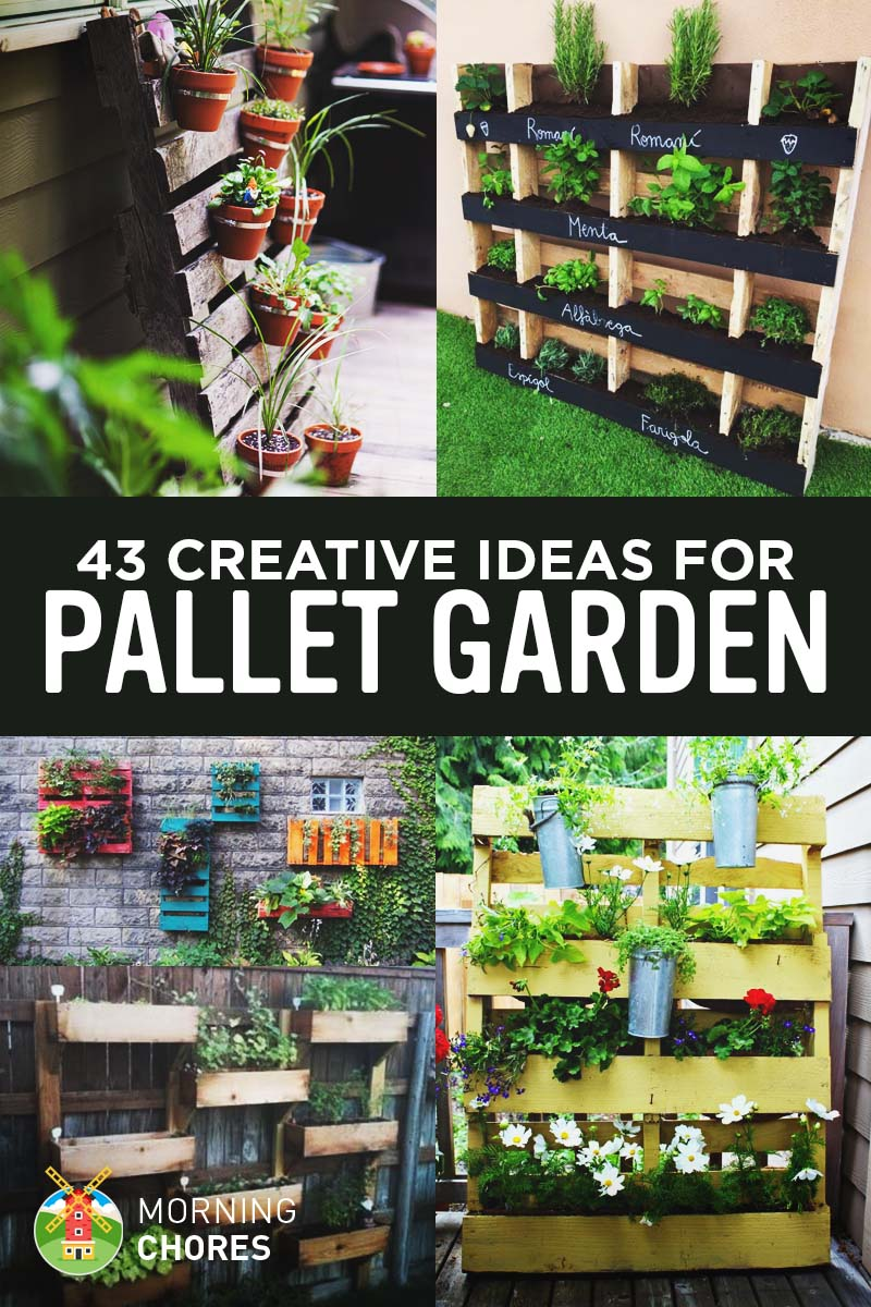 Fullsize Of Pallet Gardens Images