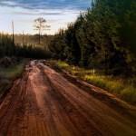 Д. Медведев поручил выделить Кировской области 213 млн насельские дороги