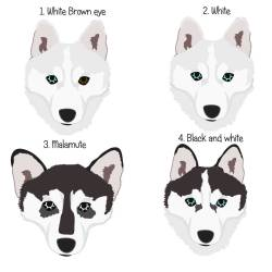 Small Of White Dog Names