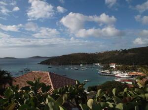 Expansive harbor views