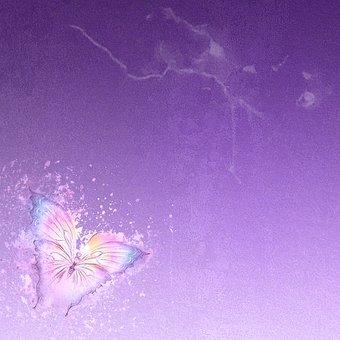 Kelebek Resmi Resimler · Pixabay · Ücretsiz resimleri İndir