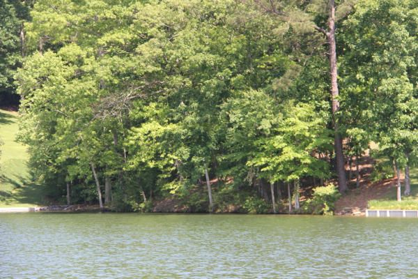 Lot 23 Ph1 Shady Bay Dr, Jacksons Gap, AL 36861