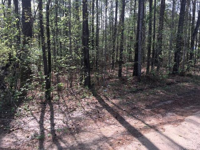 Lot 29 Cribb Rd, Alexander City, AL 35010