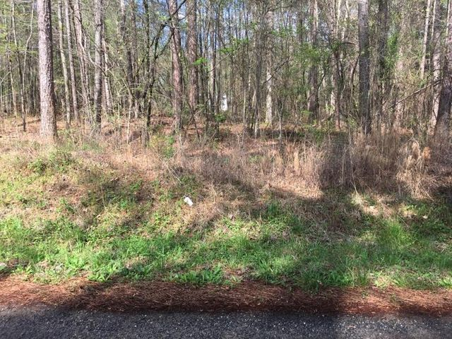 Lot 15 Cribb Rd, Alexander City, AL 35010