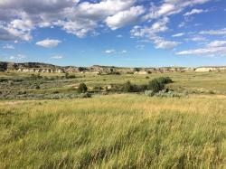 Nifty North Dakota Tries To Establish Odore Roosevelt Library North Dakota Tries To Establish Odore Roosevelt Library North Dakota Landscape Architecture North Dakota Landscape S