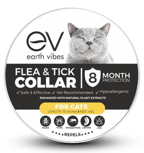 Medium Of Essential Oils For Fleas