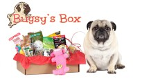 Bugsy's Box - Subscription Box for Dogs
