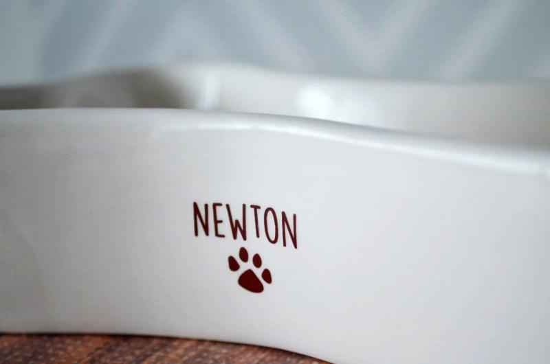 Large Of Personalized Dog Bowls