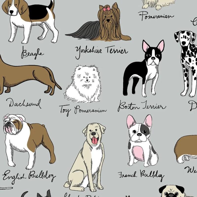 Large Of French Dog Breeds