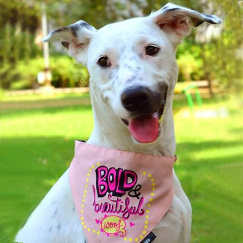 Trendy Dog Bandana B B Dog Bandana Heads Up India Tails Dog Breeds That Don T Shed Most Dog Breeds bark post Beautiful Dog Breeds