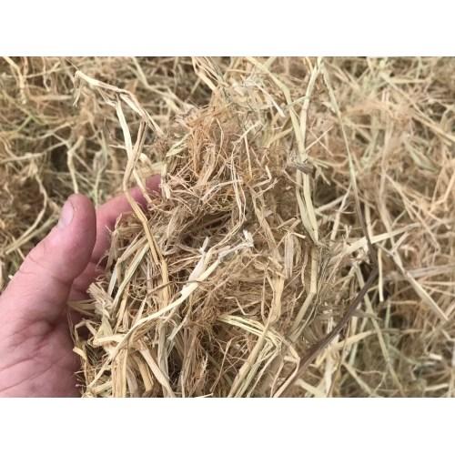 Medium Crop Of Straw Vs Hay
