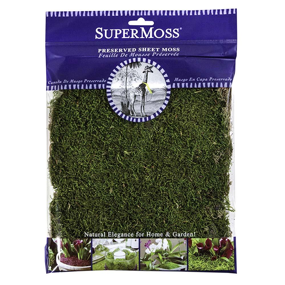 Splendiferous Supermoss Fresh Green Sheet Moss Supermoss Fresh Green Sheet Moss Harris Seeds Canada Green Grass Seed As Seen On Tv Canada Green Grass Seed Uk houzz-03 Canada Green Grass Seed