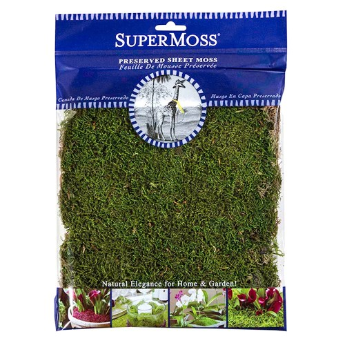 Medium Crop Of Canada Green Grass Seed