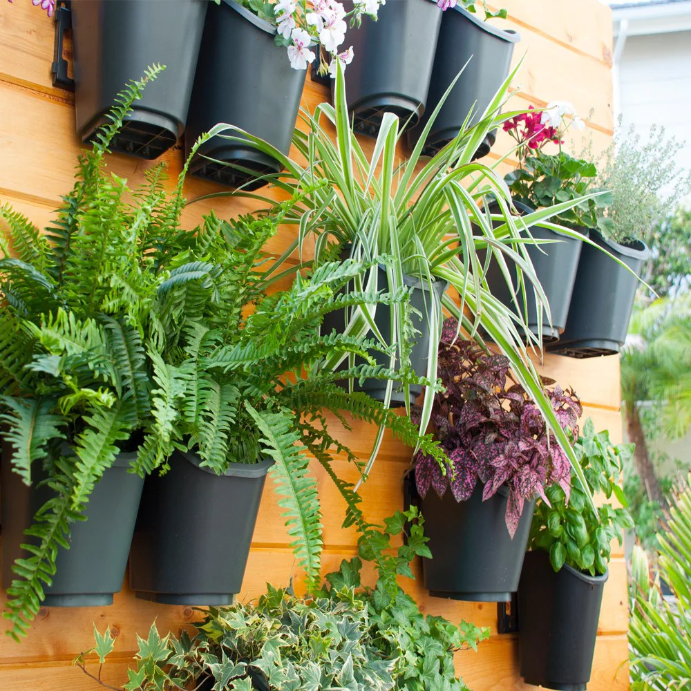 Sophisticated Dig Living Wall Modular Vertical Garden Shop Online Dig Living Wall Modular Vertical Garden Kit Vertical Garden Kit Dubai Vertical Gardening Kits garden Vertical Gardening Kit