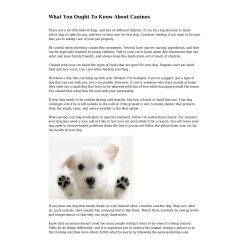 Dashing What You Ought To Know About Canines If Dogs Could Talk Casey If Dogs Could Talk Video bark post If Dogs Could Talk