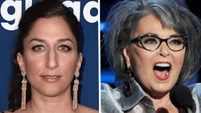 Chelsea Peretti just flawlessly shut down Roseanne s tweet about     Chelsea Peretti just flawlessly shut down Roseanne s tweet about  free  speech