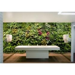 Small Crop Of Indoor Vertical Gardens
