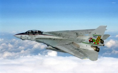 Grumman F-14 Tomcat wallpaper - Aircraft wallpapers - #3234