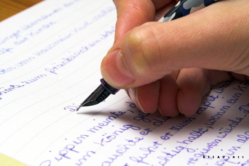Essay writer ed birdie