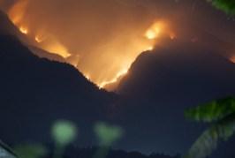 Kementerian Lingkungan Hidup Segel Lahan Terbakar | Tempo Teknologi