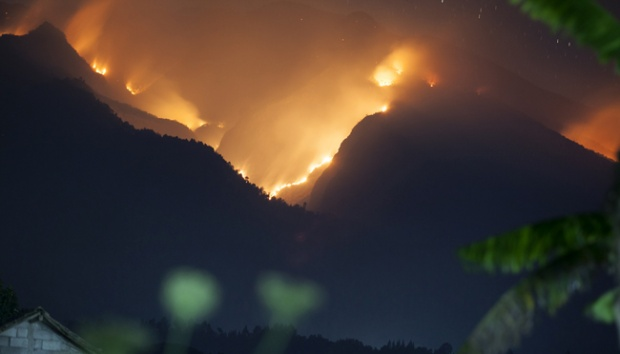 Kementerian Lingkungan Hidup Segel Lahan Terbakar