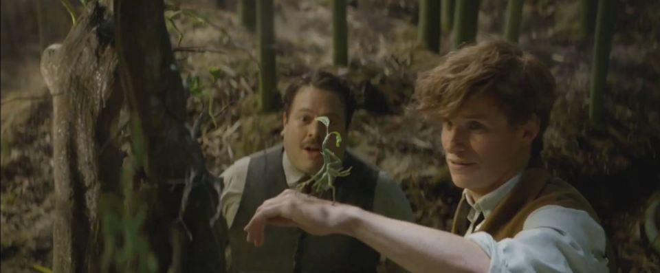 Fantastic Beasts and Where to Find Them - Feature Trailer Screen Shot 2