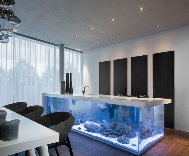 Aquarium Kitchen Islands :