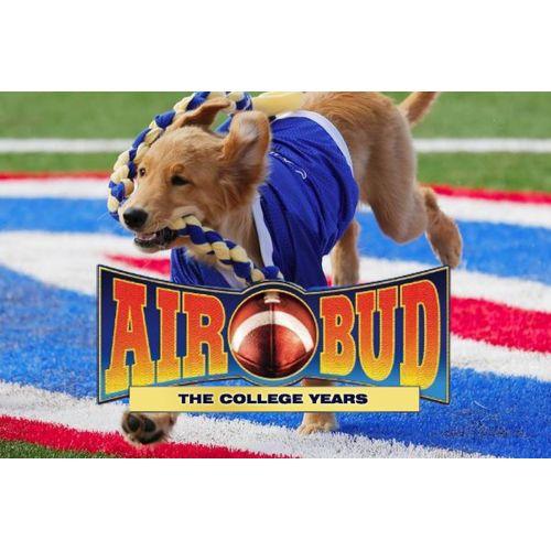 Medium Crop Of Air Bud Dog