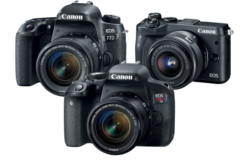 Large Of Canon T6i Vs Nikon D5500