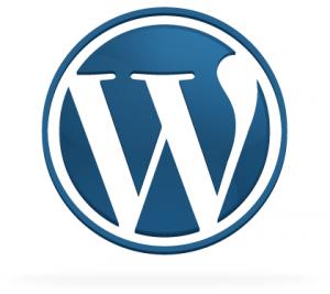 icon big 300x267 Wordpress 3.0 saldrá hasta mayo