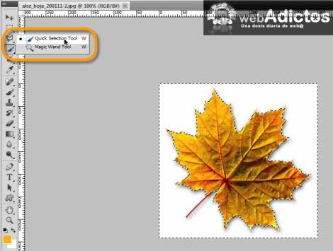 quick selection tool Crear tus propios pinceles en Photoshop