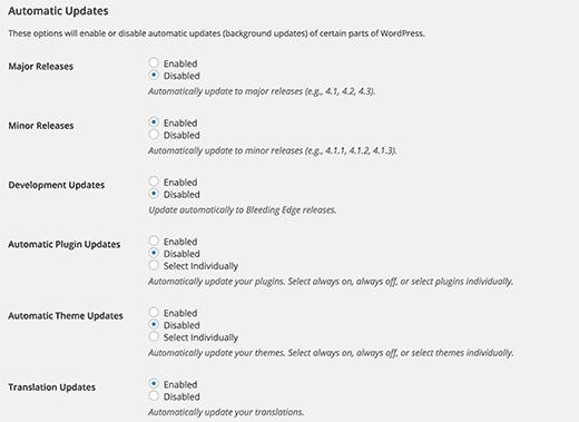 Setting up WordPress automatic updates