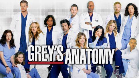 Grey's Anatomy 8ª Temporada – HDTV Dublado Torrent Download (2012)