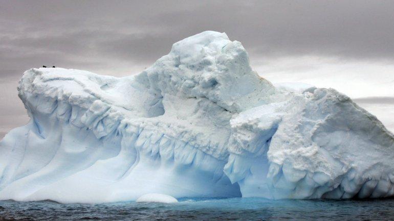 Glaciares antárticos en una foto de archivo tomada el 9 de noviembre 2007.