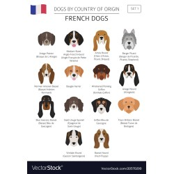 Small Crop Of French Dog Breeds