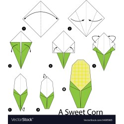 Dainty Step By Step Instructions How To Make Origami Vector 14695985 Step By Step Instructions On How To Make A Money Lei Step By Step Instructions S