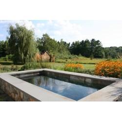 Small Crop Of Backyard Reflecting Pool