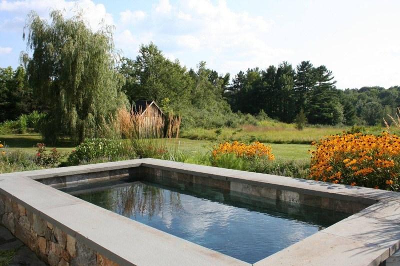 Large Of Backyard Reflecting Pool