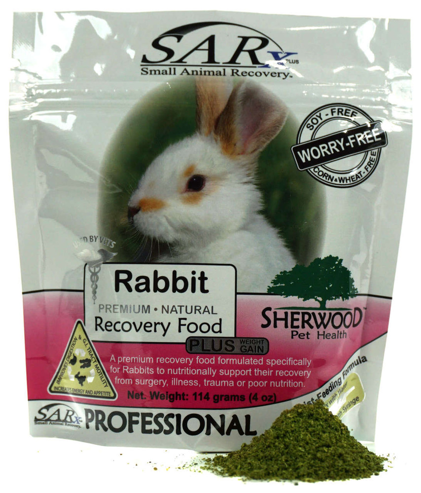 Scenic Rabbit Sarx 114g Front 22405 Can Rabbits Eat Frozen Bananas Can Rabbits Eat Bananas Grapes houzz-03 Can Rabbits Eat Bananas