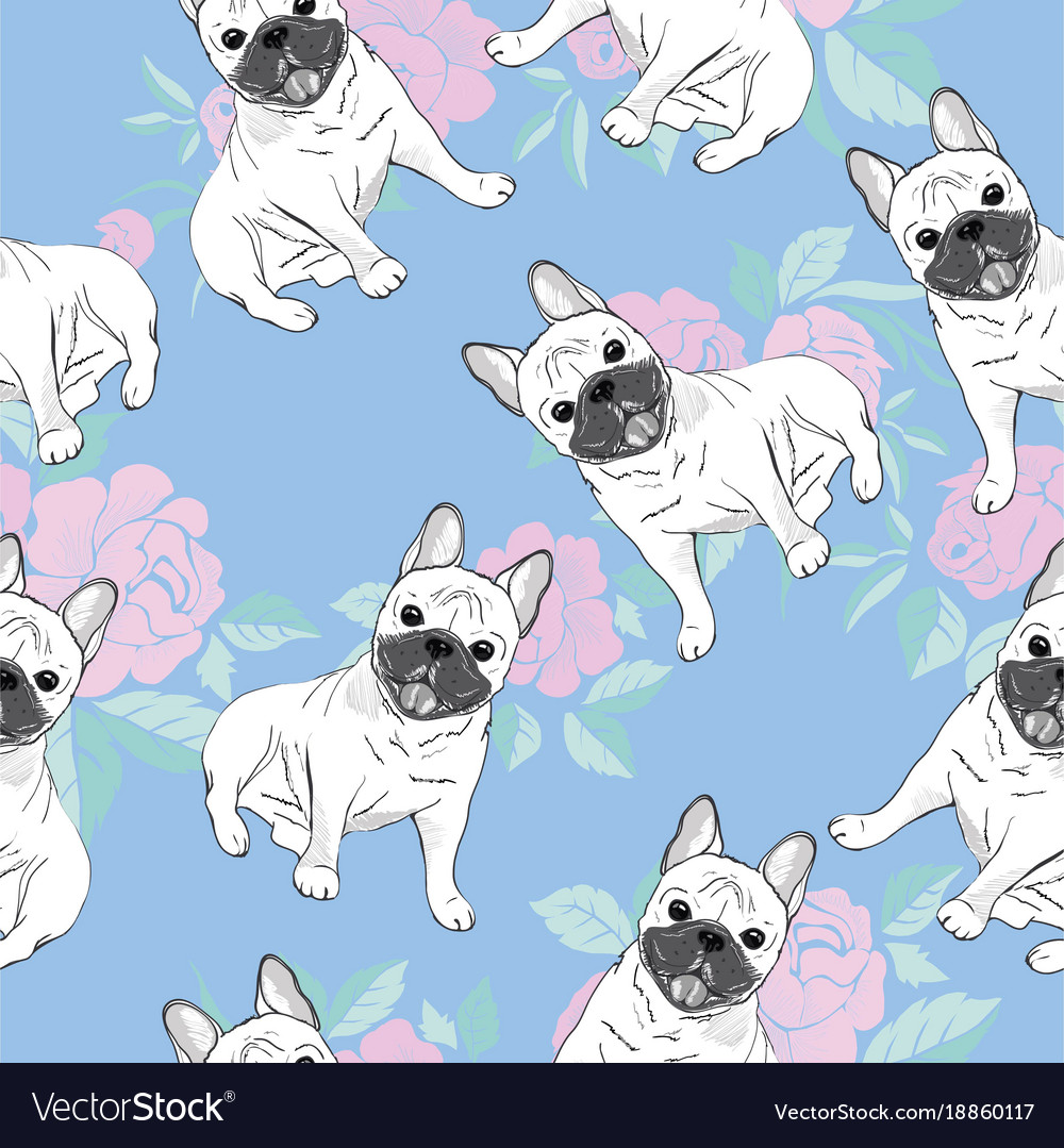 Wonderful French Seamless Pattern French Sentences French Bulldog On Vector 18860117 Baby bark post Cute In French