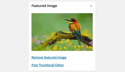 Launch post thumbnail editor from the post editor screen