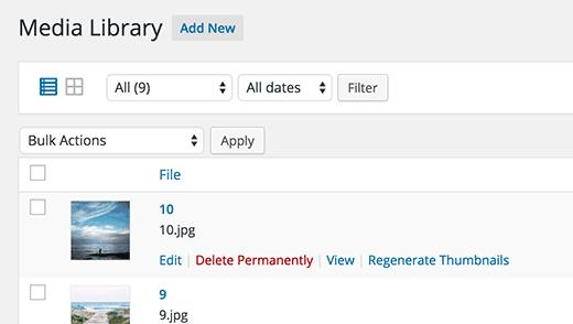 Regenerating image sizes in WordPress