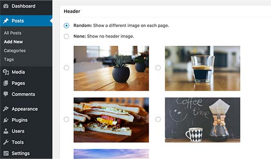 Random header for single post and pages in WordPress
