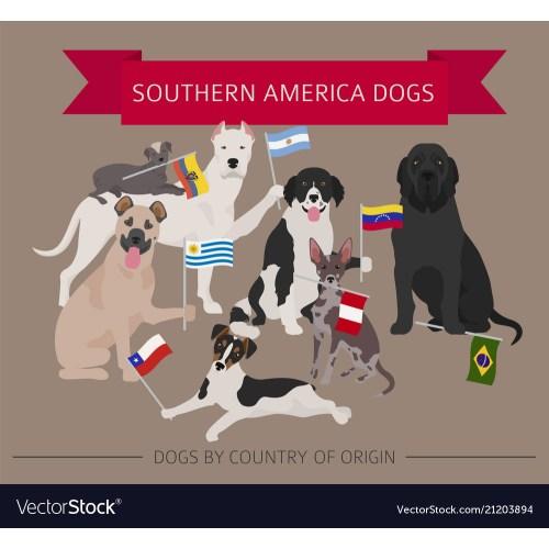 Medium Crop Of Dog In Latin