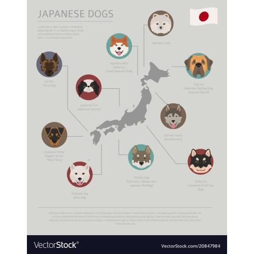 Medium Crop Of Japanese Dog Breeds