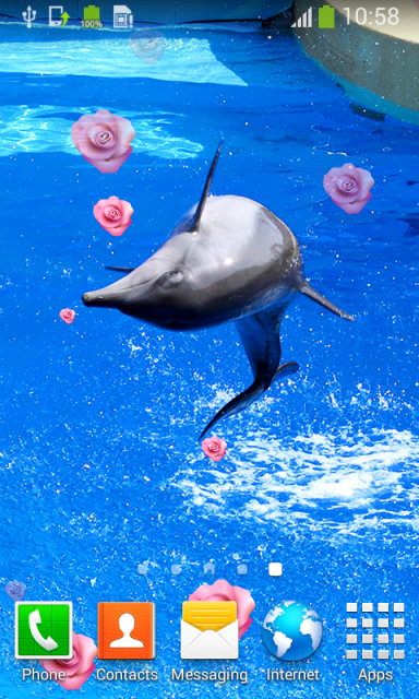 Dolphin Live Wallpapers | Download APK for Android - Aptoide