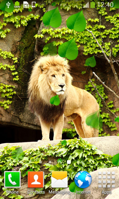 Lion Live Wallpapers | Download APK for Android - Aptoide