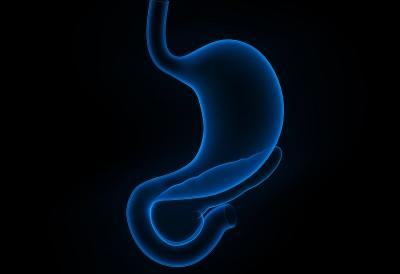 Estómago (2)
