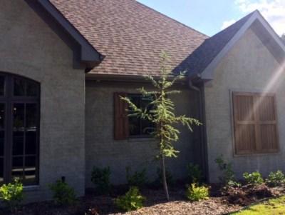 House Plan 82162 | Photo Gallery | FamilyHomePlans.com